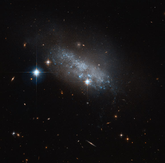 Hubble Views Irregular Galaxy IC 3583