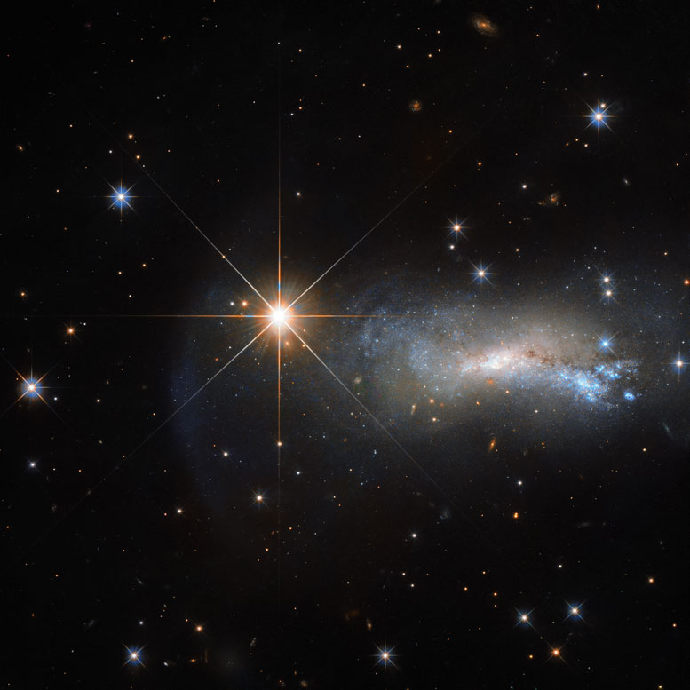 Hubble Views TYC 3203-450-1 and NGC 7250