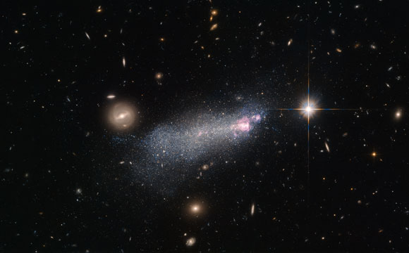 Hubble Views Wolf-Rayet Galaxy SBS 1415+437