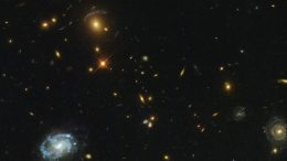Hubble Views a Giant Galaxy Custer