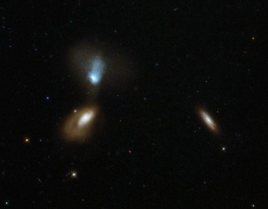 Hubble Views a Host of Colorful Shaped Galaxies