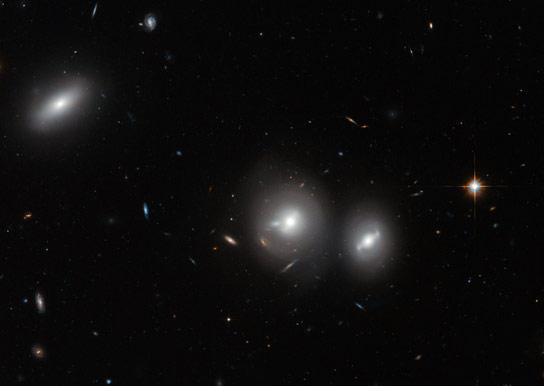 Hubble Views a Massive Gathering of Galaxies