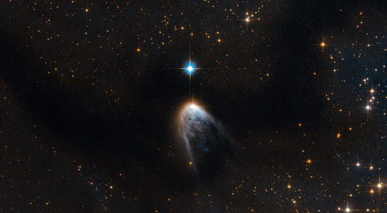 Hubble Views a Young Star in the Circinus Cloud