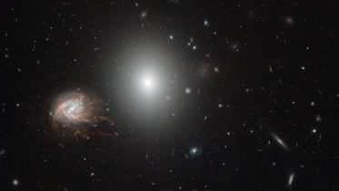 Hubble Views the Coma Cluster
