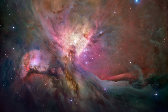 Hubble image of a region of the Orion Nebula