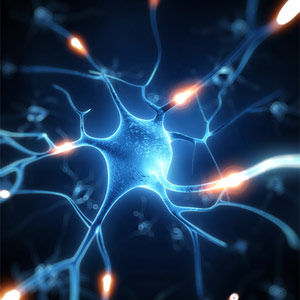Human Neurons Linked to Navigation in Open Environments