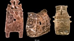Human Remains Point to Origin of Ancient Culture
