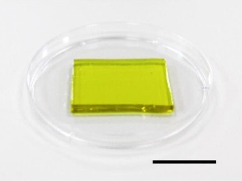 Hydrogel Cool Down Electronic Devices