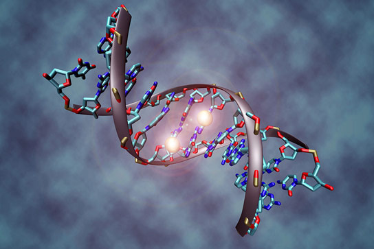 Identifying Epigenetic Markers Reveals Tumor Weaknesses