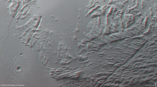 Image of Sulci Gordii in 3D
