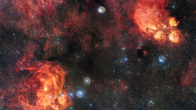 Image of the Cat's Paw and Lobster Nebulae