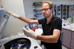 Infusion of Young Blood Reverses Age Related Impairments