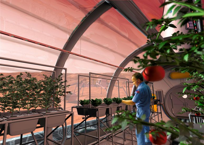 Inside Mars Greenhouse
