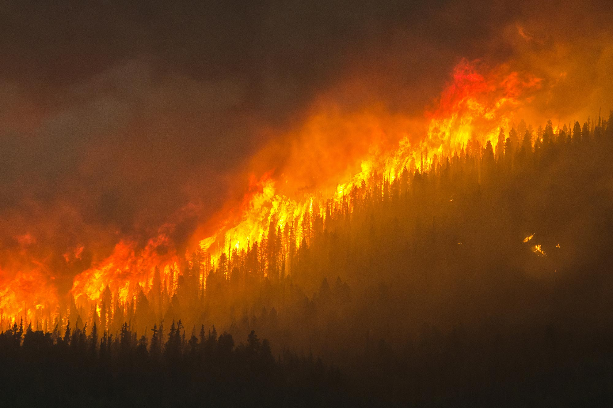 Increased Threat of Fierce Fires and Accelerated Global Warming From Water  Loss in Northern Peatlands