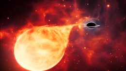 Intermediate-Mass Black Hole Tearing Apart Star