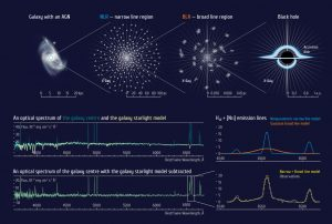 Intermediate Mass Black Holes Discovered in Galactic Nuclei