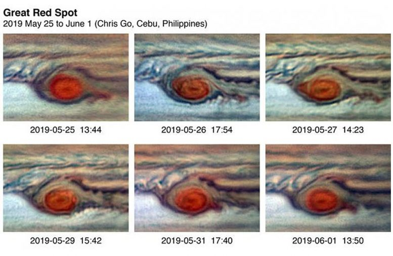 Jupiter's Great Red Spot Daily