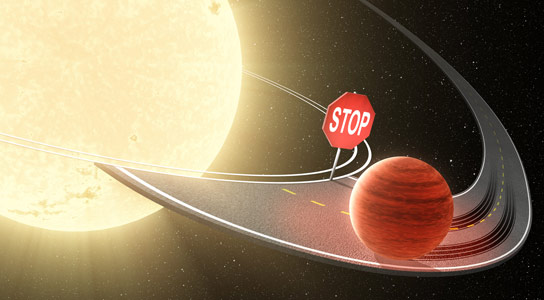 Kepler Data Shows That Hot Jupiters Are Not Regularly Consumed by Stars