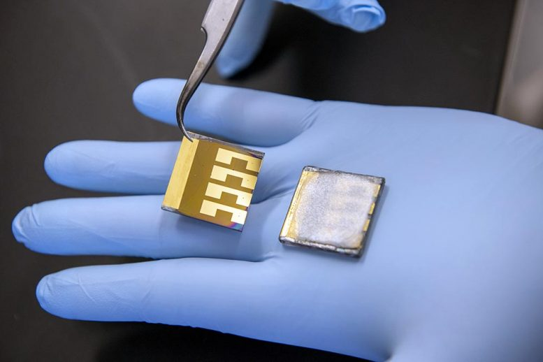 Laboratory Solar Cell Samples