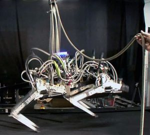 Land Speed Record for Legged Robots
