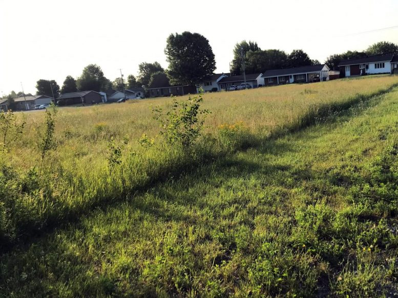Lawn Mowing Experimental Site