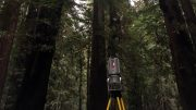 Lidar Biomass of Giant Californian Redwood Trees