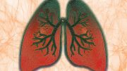 Lungs Breathing Illustration