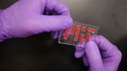 MIT Develops Tough Hydrogel Hybrid