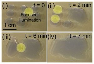 MIT Engineers Control Fluids Using Visible Light