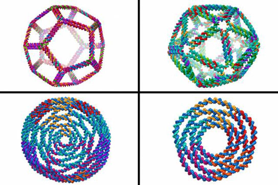 MIT Engineers Design Complex DNA Shapes