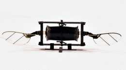 MIT Insect Robot