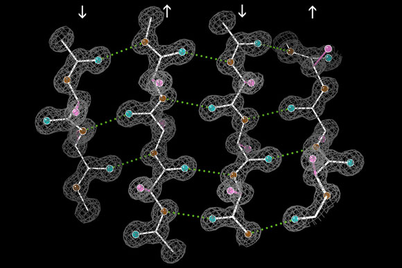MIT Researchers Reveal New Clues to How Proteins Fold
