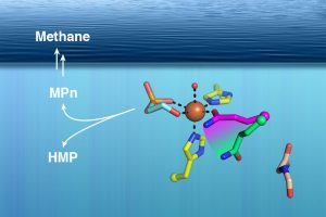 MIT Researchers Solve Methane Mystery