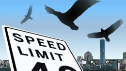 MIT researchers find critical speed for birds and drones
