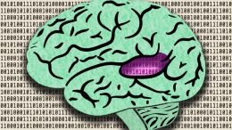Machine-Learning System Processes Sounds Like Humans