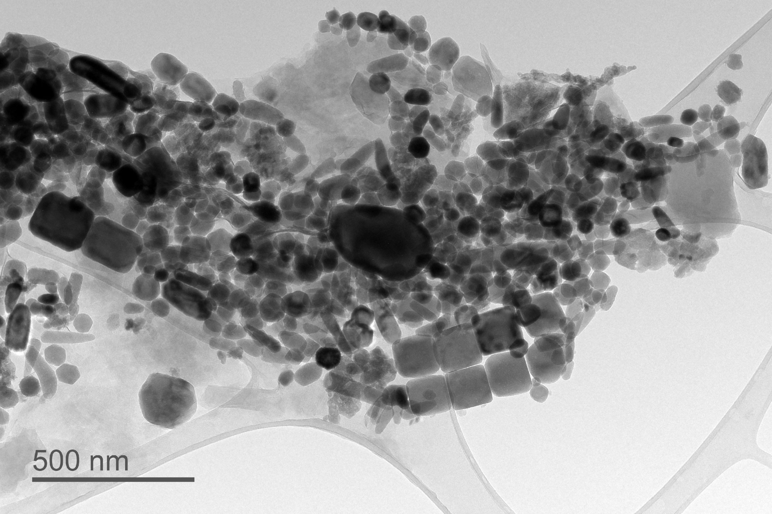 Tiny Magnetic Particles in Microscopic Fossils Record Ancient Climate Conditions