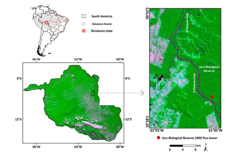 Deeper Insight Into 2019 Fires From Satellite Study of ... on map of rio de janeiro, iguazu falls, temperate rainforest, amazon basin, amazon river, map of europe, map of angel falls, map of chile, map of brazil, map of vatnajokull glacier, map of ecuador, map of galapagos islands, map of brazilian highlands, map of amazon river, map of gran chaco, tropical rainforest climate, map of costa rica, peruvian amazon, brazilian highlands, map of iguazu river, map of trobriand islands, map of red sea, daintree rainforest, map of andes, tropical rainforest, map of venezuela, map of amazon basin, tropical and subtropical moist broadleaf forests, map of pacific ocean, map of amazon deforestation,