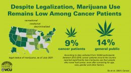 Marijuana Use Remains Low Among Cancer Patients