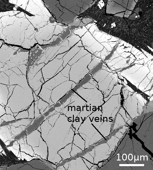 Martian Clay Contains Chemical Implicated in the Origin of Life