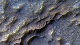 Martian Surface Rock