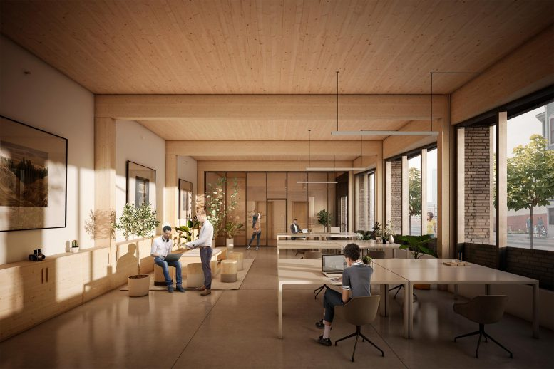 Mass Timber Residential Building Interior