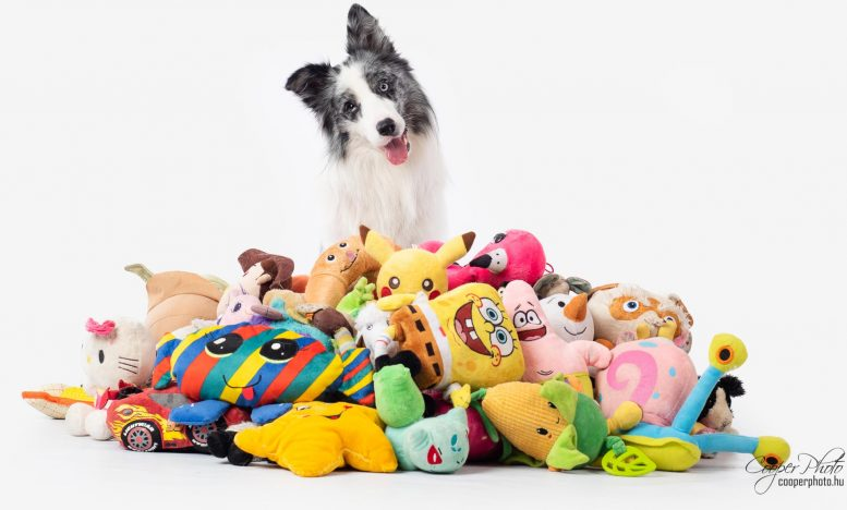 Max With Toys