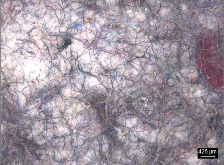 Microfibers Filtered From Washing Loads