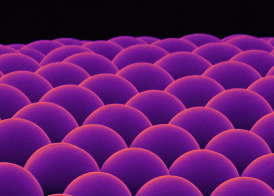 Microscopic lenses made of calcium