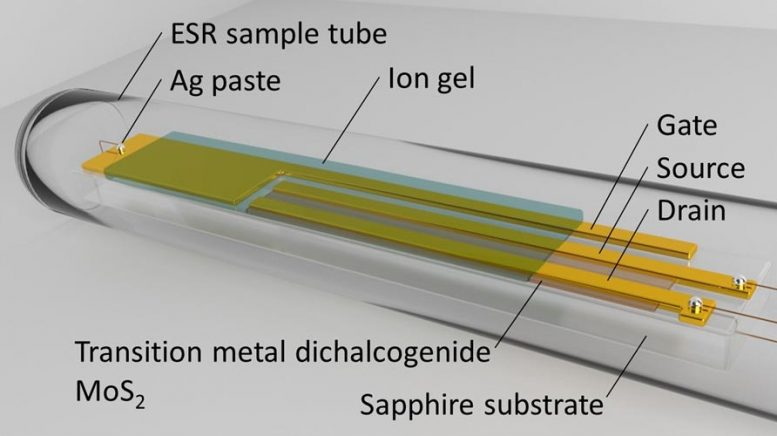 MoS2 Transistor in ESR Sample Tube