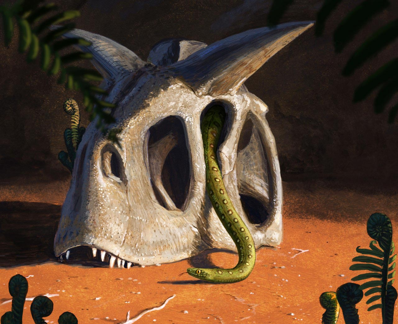 All Living Snakes Evolved From a Few Survivors of Asteroid That Killed the Dinosaurs – SciTechDaily