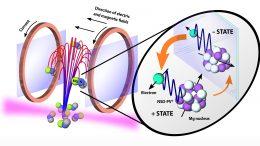 Molecular Fountain in Action