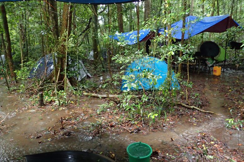 Montagne d'Ambre National Park Camp During Cyclone Ava