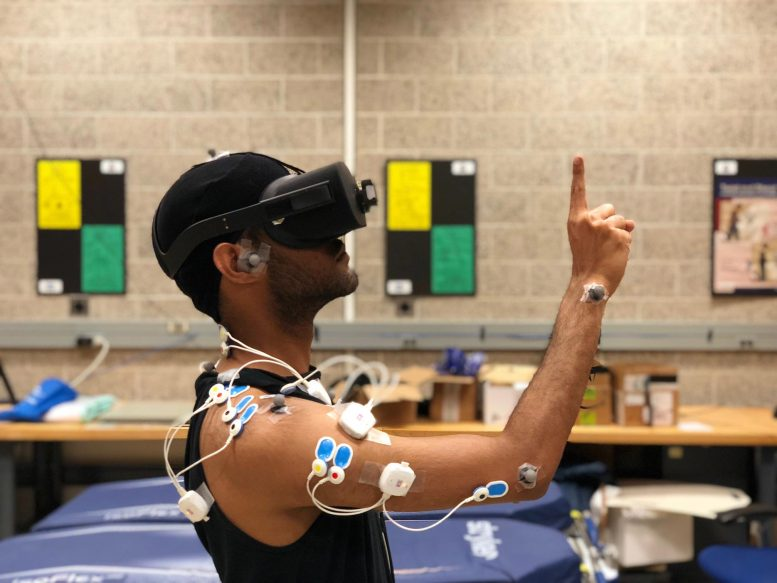 Muscle Activity in Virtual Reality