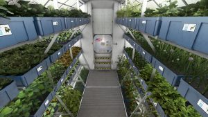 NASA Plans to Grow Food on Future Spacecraft and on Other Planets